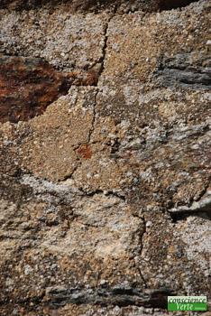 portion de la fissure de disjointement des pierres