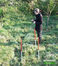 détection eau avec antennes parallèles par un géobiologue